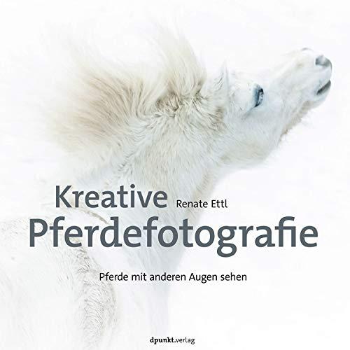 Kreative Pferdefotografie: Pferde mit anderen Augen sehen