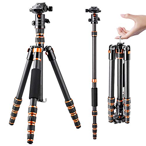 K&F Concept BA225 Carbon Stativ, 152cm Leichtes, Flexibles Kamera Stativ mit 360° Kugelkopf, 1/4'' Gewinde, Tragtasche für DSLR Camera