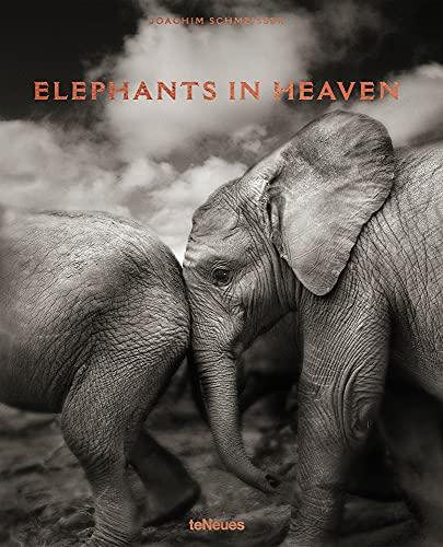 Elephants in Heaven: Joachim Schmeisser