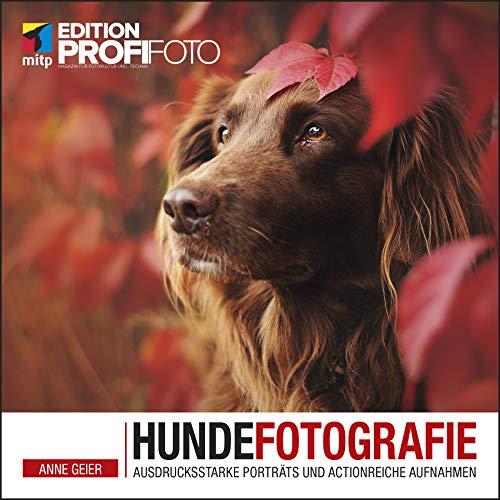 Hundefotografie: Ausdrucksstake Porträts und actionreche Aufnahmen (mitp Edition ProfiFoto)