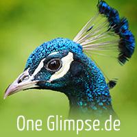 One Glimpse.de