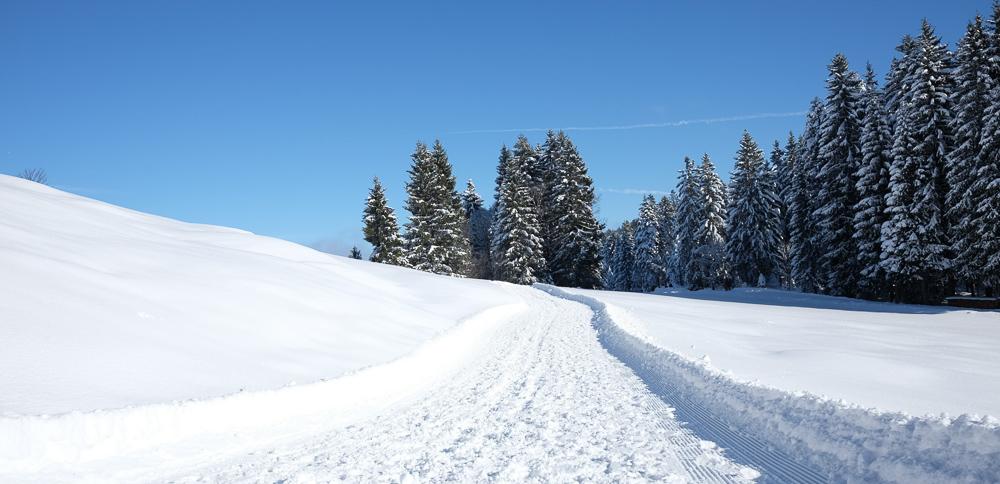 Oberstaufen-Winter