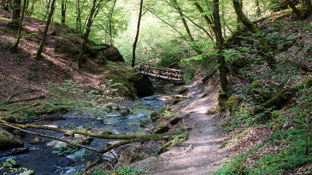 Der wildromantische Weg durch die Ehrbachklamm
