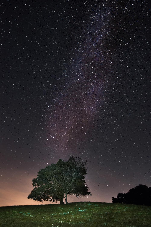 Foto-von-sternen