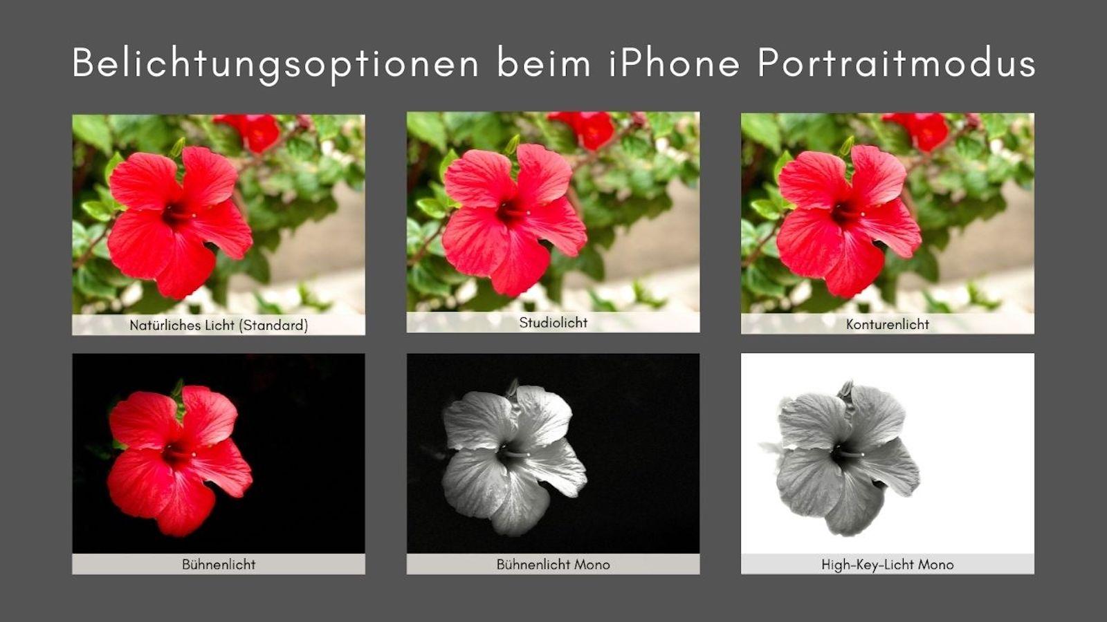 iPhone Belichtungseffekte Portraitmodus